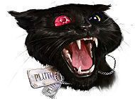 Подробнее об игре Страшные истории. Эдгар Аллан По. Черный кот